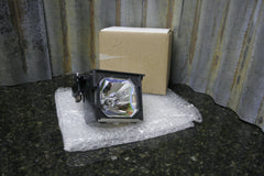 Sanyo PLC-XP50 XP55 Genuine OEM Ushio Replacement Lamp & Housing POA-LMP67 - tin can industries - 1