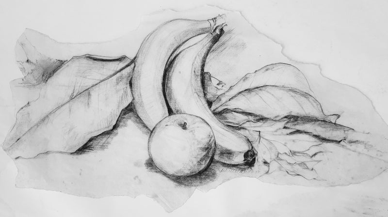 Natural Life Drawing – Summer 2021 sessions