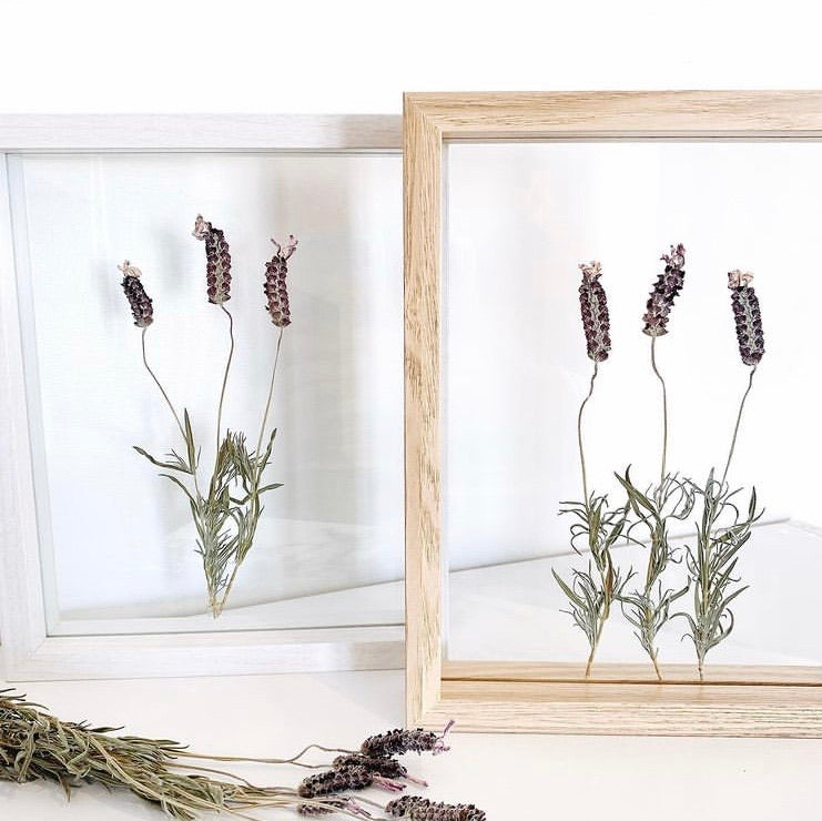 "Pressed Flower Frames ""Mother's Day Special"" - Sat 8 May 2021"
