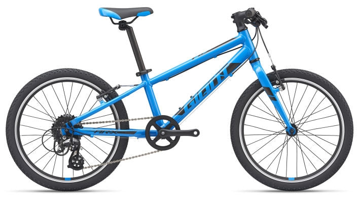 Giant ARX 20 Children's Bike 2021