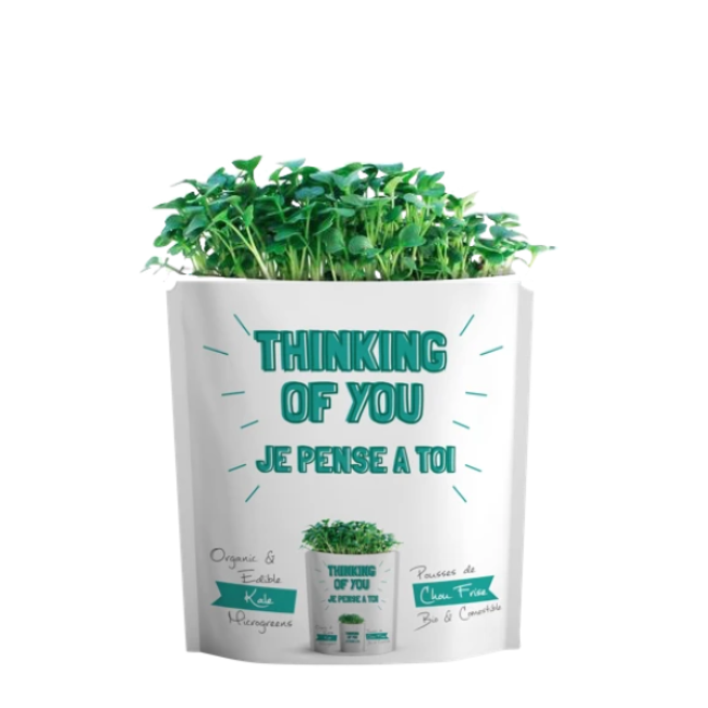 gift-a-green thinking of you - kale microgreens