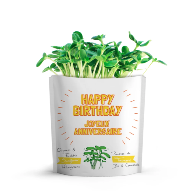 gift-a-green happy birthday - sunflower microgreens