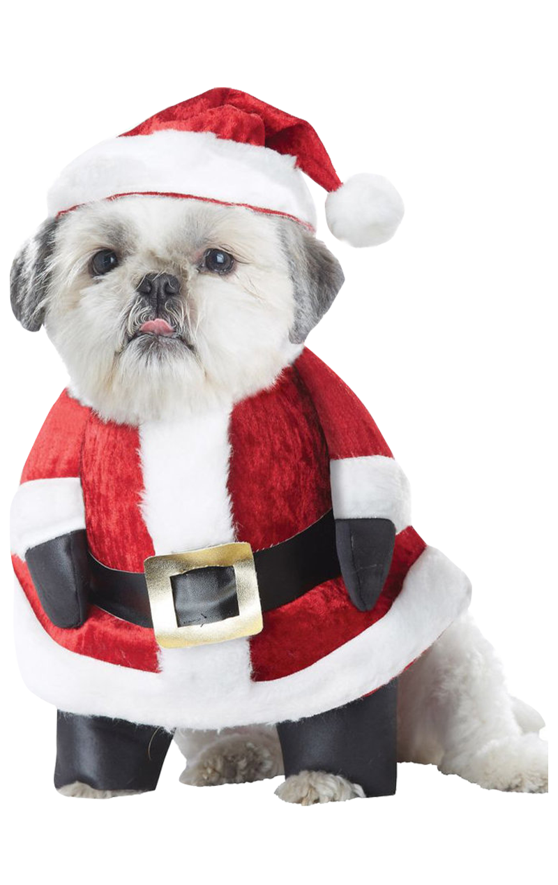 Santa Paws Christmas Dog Costume