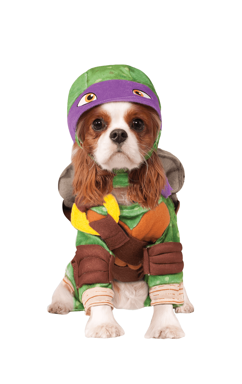 Ninja Turtles Donatello Dog Costume