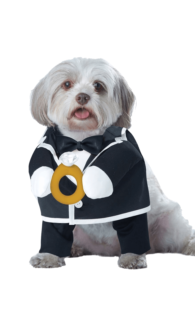 Puppy Groom Dog Costume