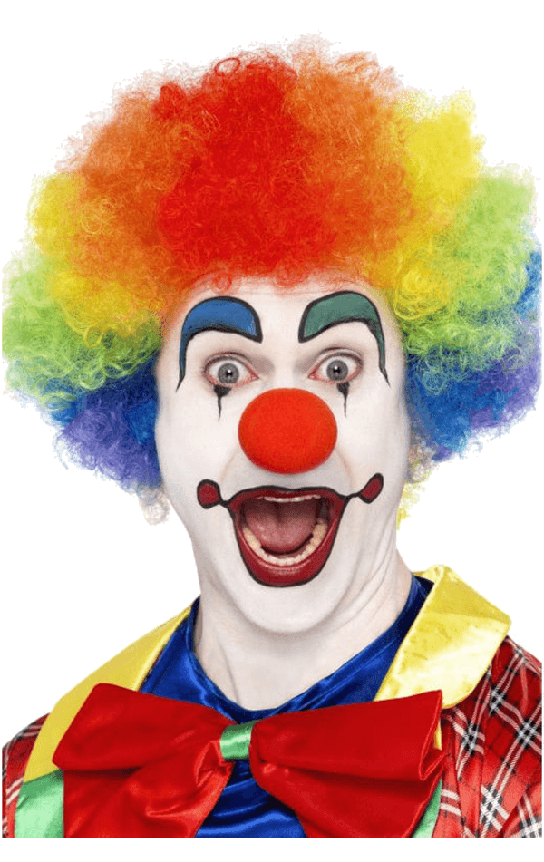 Economy Clown wig in RAINBOW