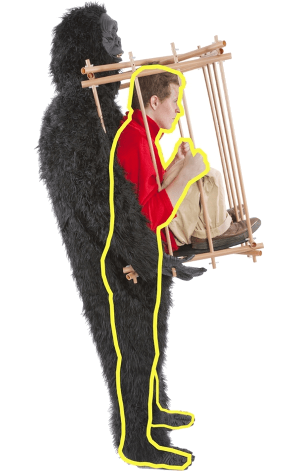 Adult Gorilla and Cage Costume