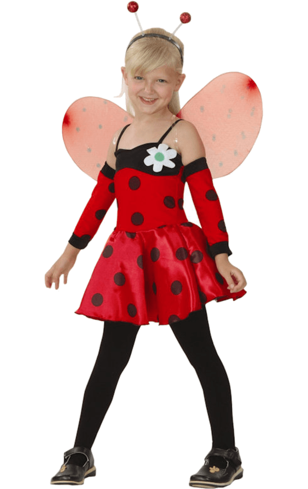 Child Ladybird Costume