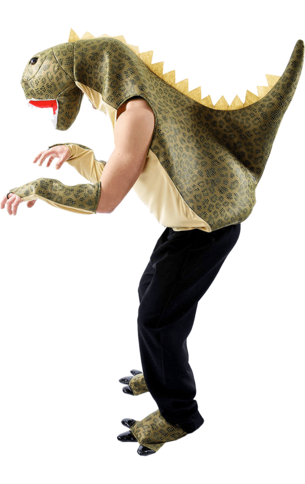 Adult Dinosaur Animal Costume