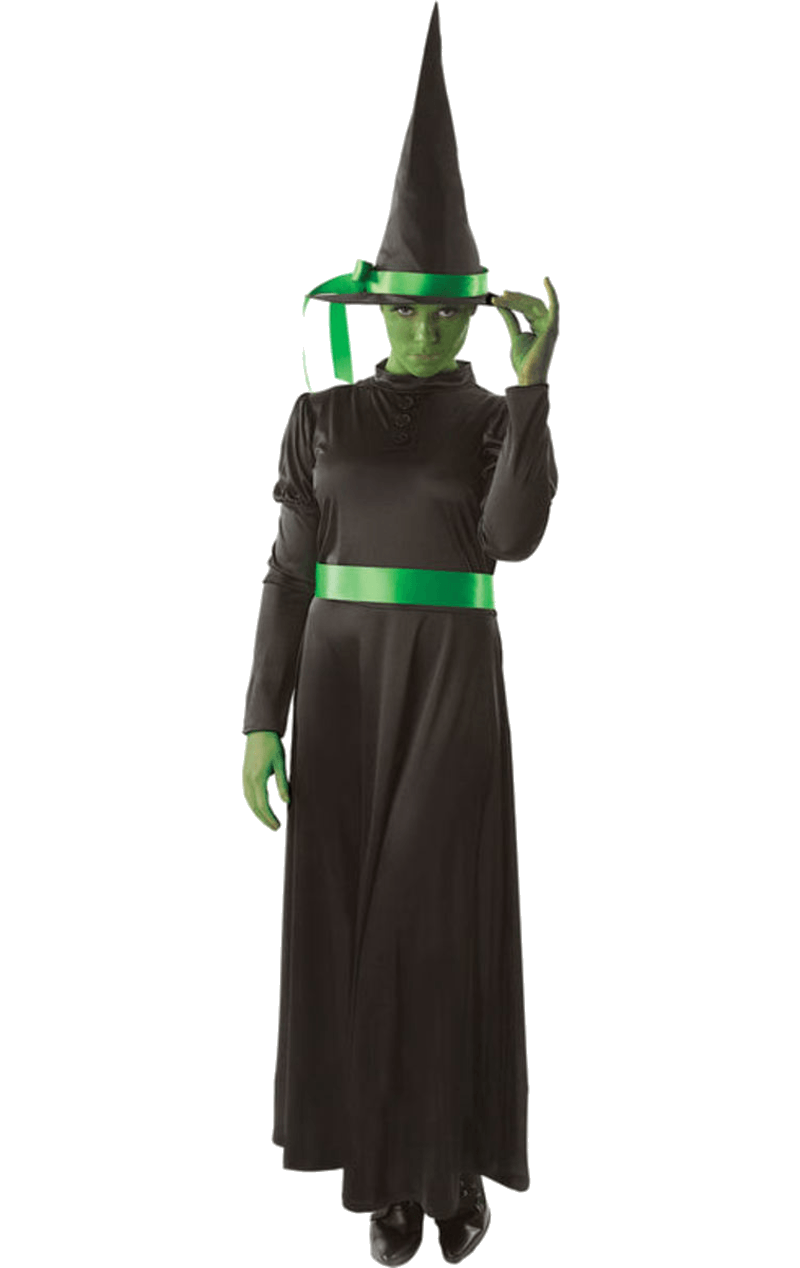 Adult Wicked Witch Halloween Costume