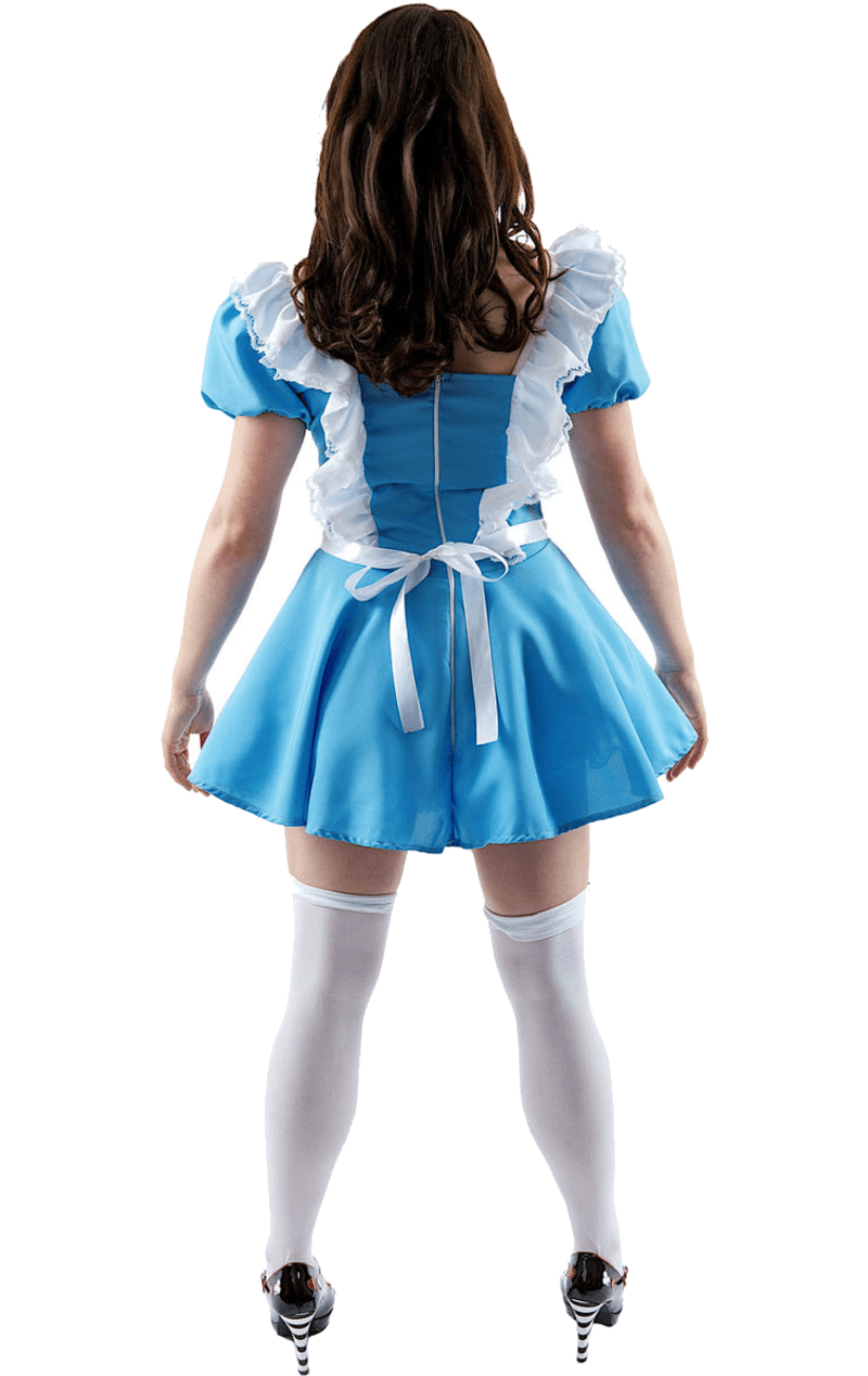 Adult Traditional Alice Costume