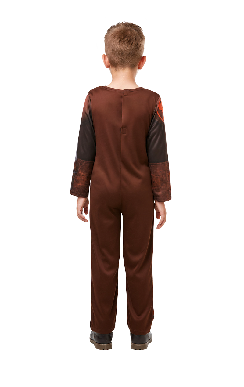 Child Hiccup Costume