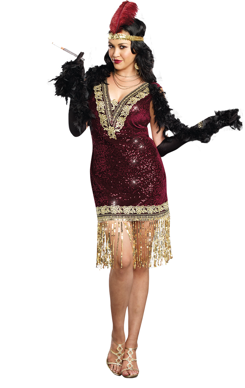 Sparkly 1920s Flapper Dress Costume (Plus Size)