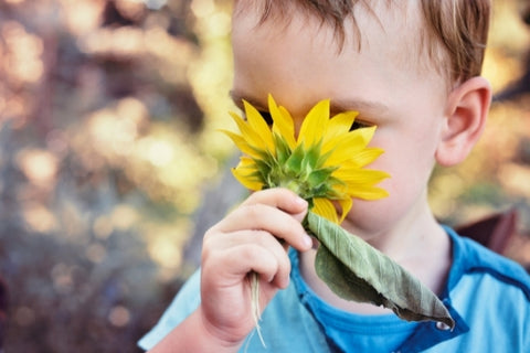 A child smelling a flower