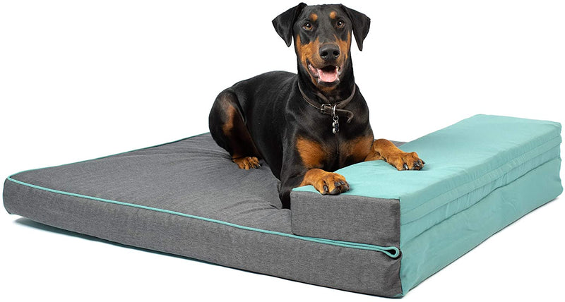 Hyper Pet Double Dreamer Deluxe Convertible Foam Dog Bed  Large