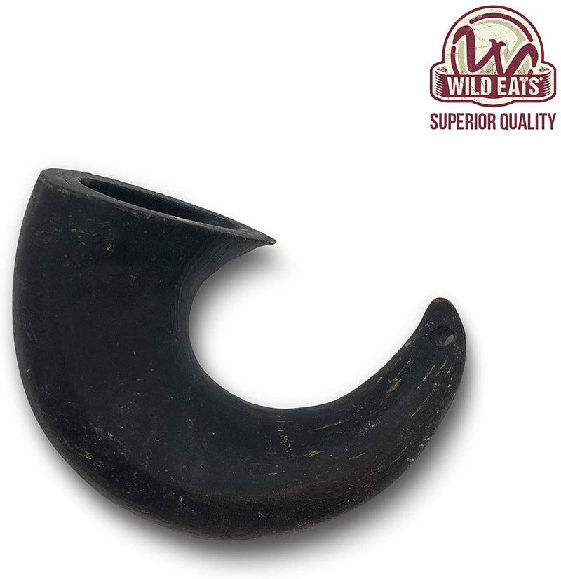 WATER BUFFALO HORN, SMALL