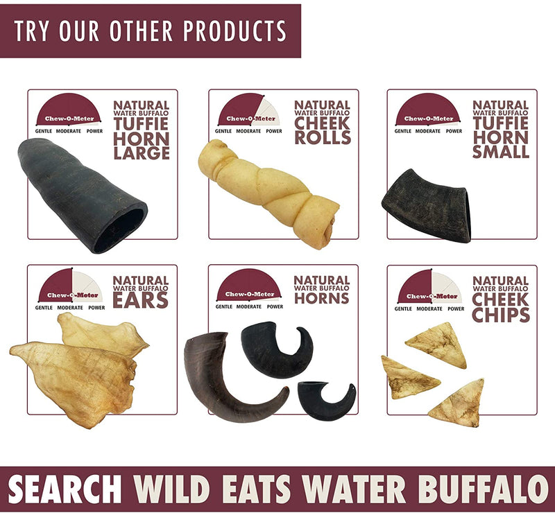 WATER BUFFALO HORN, 2 PACK,  LARGE