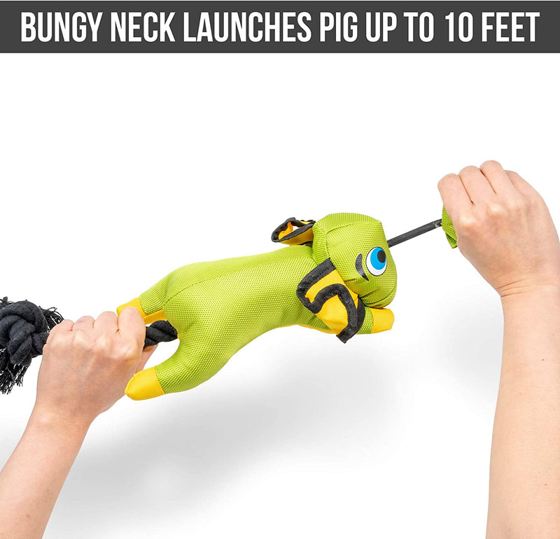 FLYING PIG SLINGSHOT TOY - GREEN