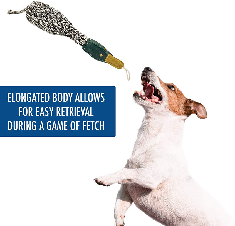 BOTTLE BIRD - NATURAL ROPE TOY
