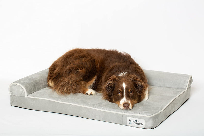 PetFusion | BetterLounge Dog Bed & Lounge | Large | Gray