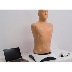 MATT Adult | MedVision Auscultation Task Trainer