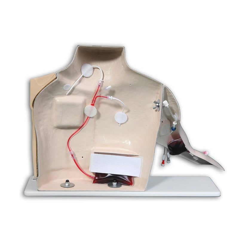 Chester Chest™ Vascular Access Simulator With Port Access Arm, Light
