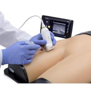 Gen II Femoral Vascular Access and Regional Anesthesia Ultrasound Training Model