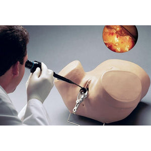 Hysteroscopy Simulator