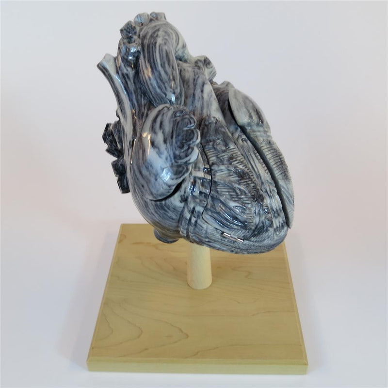 Marble Heart of America 2x Life-size
