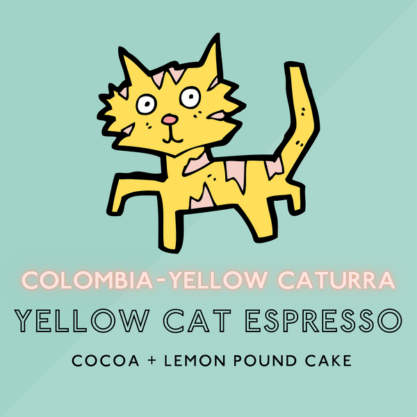 Colombian Yellow Cat Espresso - Medium Roast (SP)
