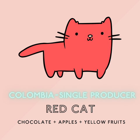 Colombian Red Cat