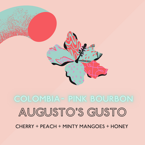 Augusto's Gusto: Light Roast (SP)