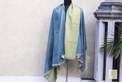Pale Blue And Pale Green Reversible Pashmina Sha Vayu