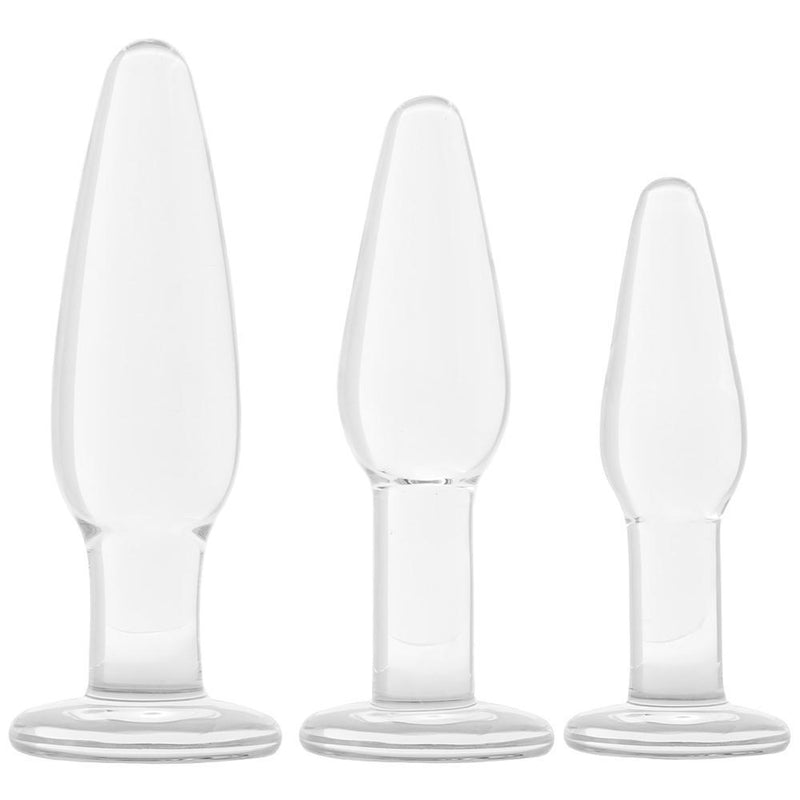 glŠs 3 Piece Anal Training Set