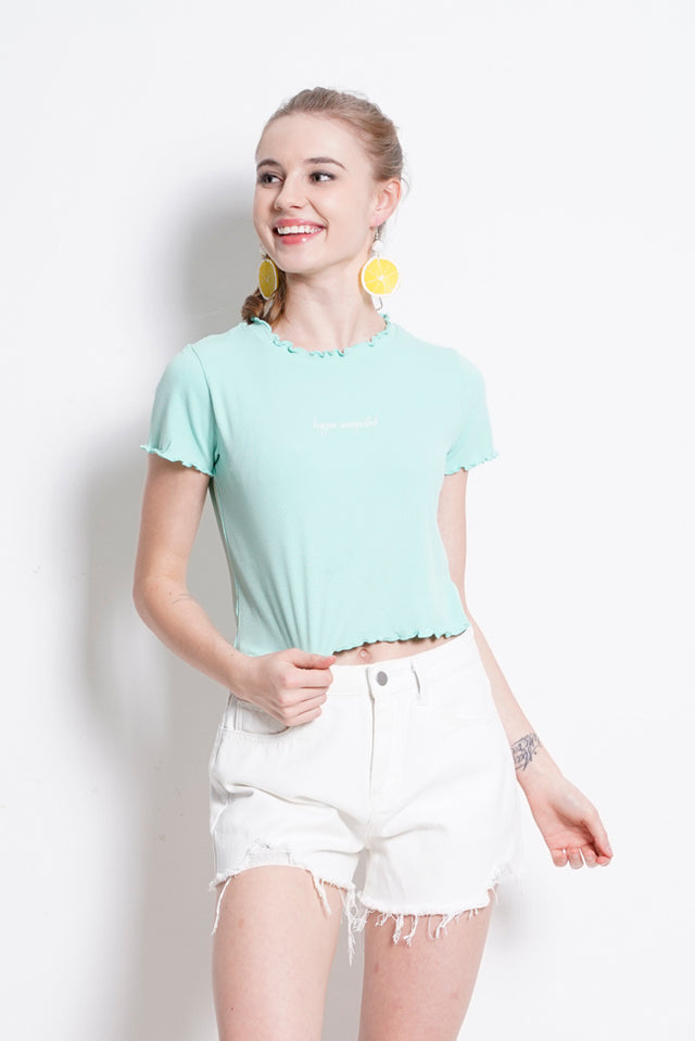 Short Sleeve Ribbed Blouse - Light Green