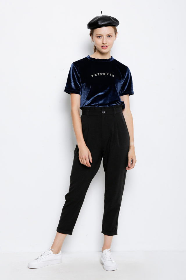 Short Sleeve Velvet Top - Blue