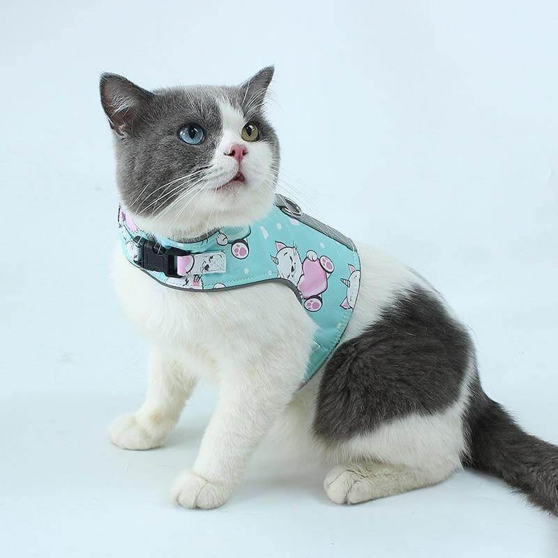 Reflective Leash Cat Harness - KittyNook