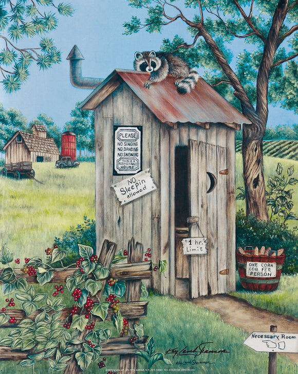 Raccoon Outhouse - Original Oil