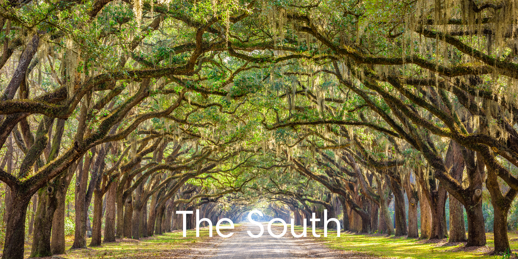 Region #2 - The South