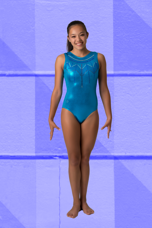 Blue Tribal Star Leotard