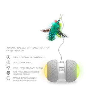 😻 Smart Feather Toy for Cat
