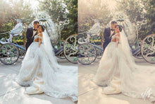 Load image into Gallery viewer, 250 Pastel Wedding Luts Pack Photography Presets Lightroom Presets Camera Raw Presets