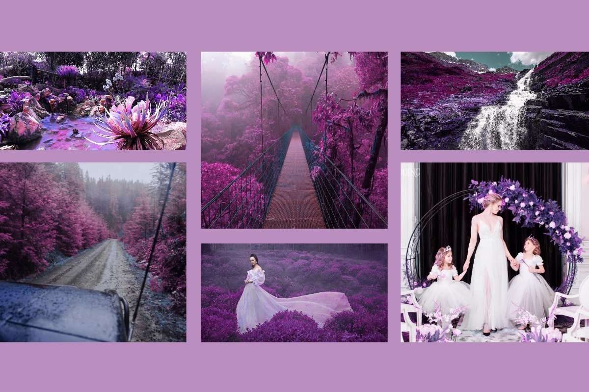 454 Fantasy Cinematic Infrared LUTS Pack Photography Presets Lightroom CameraRaw Photoshop Lumafusion red leaf, infrared pink, infrared purple, infrared blue, photography, fantasy photography, fantasy photos