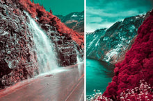Load image into Gallery viewer, 454 Fantasy Cinematic Infrared LUTS Pack Photography Presets Lightroom CameraRaw Photoshop Lumafusion red leaf, infrared pink, infrared purple, infrared blue, photography, fantasy photography, fantasy photos