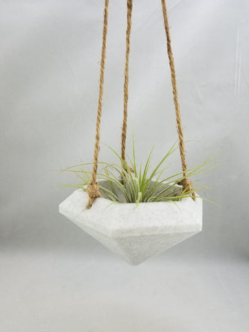 Hanging Gem Planter