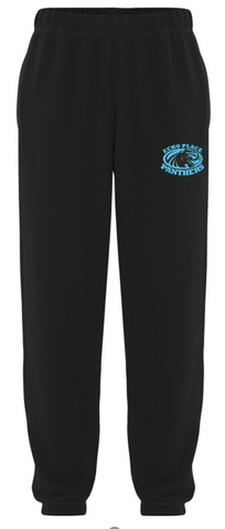 Echo Place Panthers track pants