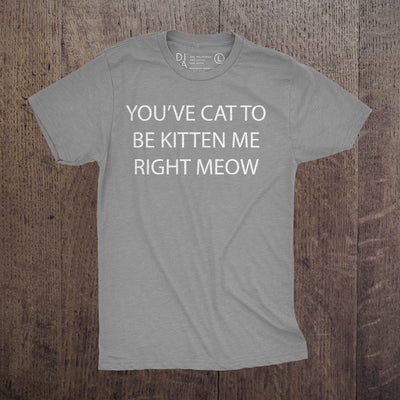 You Cat to be Kitten Right Meow