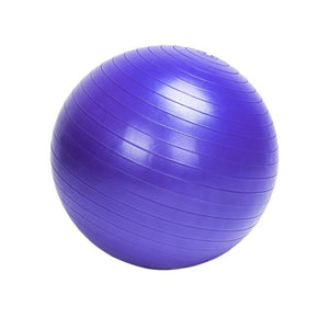 85/75/65/55cm Sports Yoga Balls with Pump