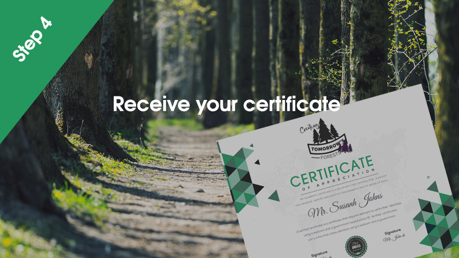 Receive a certificate from Tomorrow's Forests
