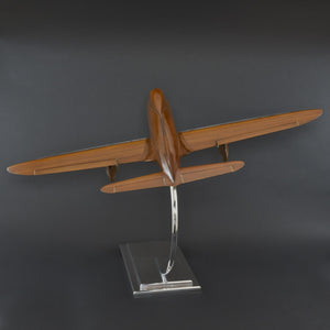 Walnut Wind Tunnel Model